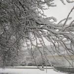 [Foto-Post] Nieva en Euskadi