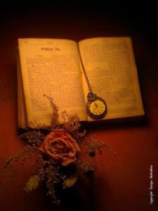libro, reloj y flor