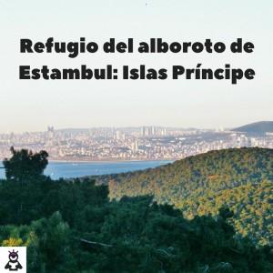 Refugio del alboroto de Estambul_ Islas Príncipe